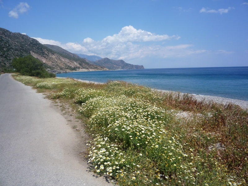 Greece, Island of Crete, Paleochora, Walk to Anidri 06010