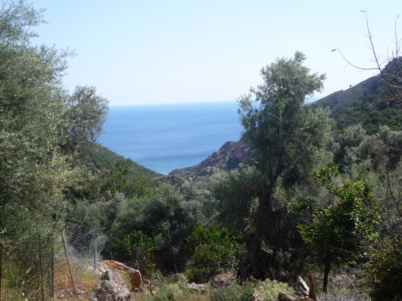 Greece, Island of Crete, Paleochora, Walk to Anidri 06911