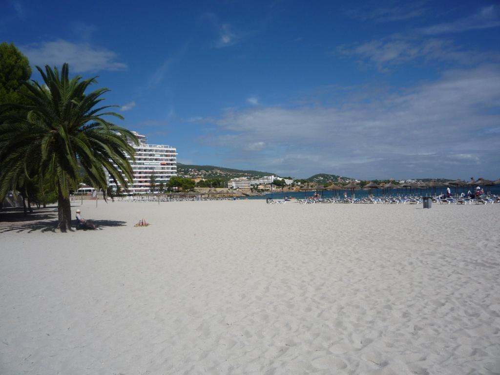 Palma Nova 10010
