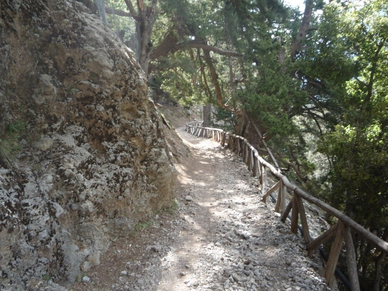 Greece, Island of Crete, Paleochora, The Samaria Gorge Walk 13812