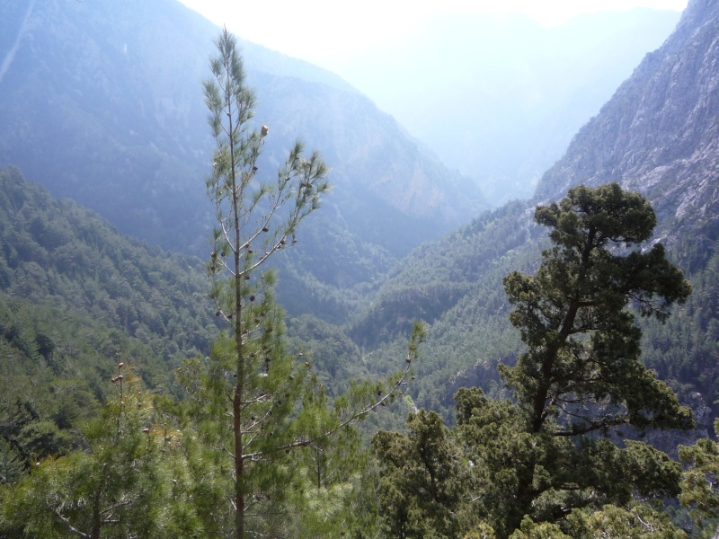 Greece, Island of Crete, Paleochora, The Samaria Gorge Walk 13910