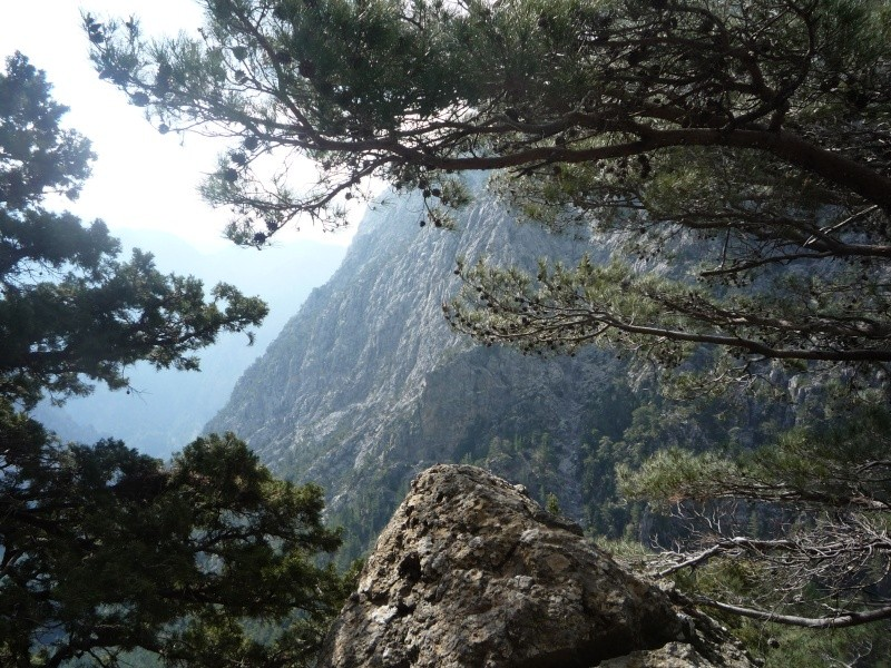 Greece, Island of Crete, Paleochora, The Samaria Gorge Walk 14111