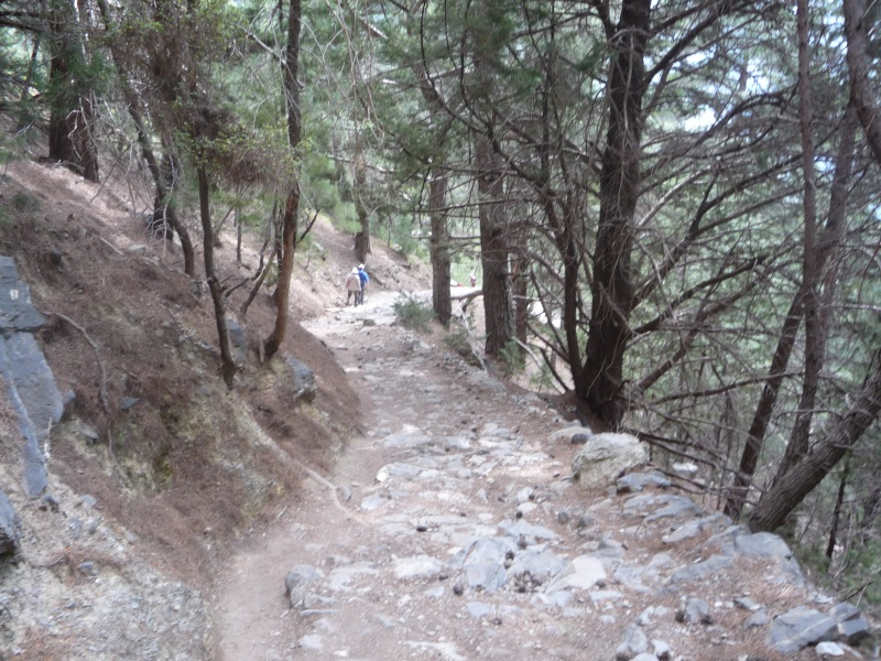Greece, Island of Crete, Paleochora, The Samaria Gorge Walk 14610