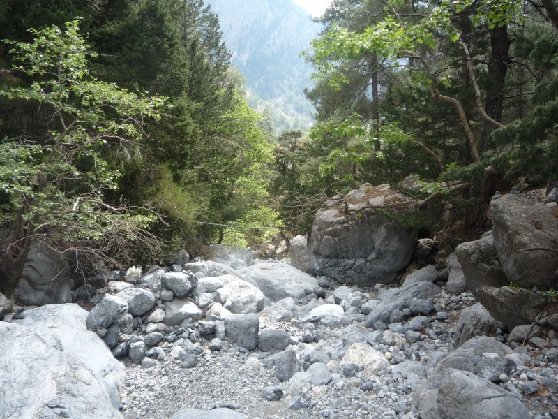Greece, Island of Crete, Paleochora, The Samaria Gorge Walk 15210
