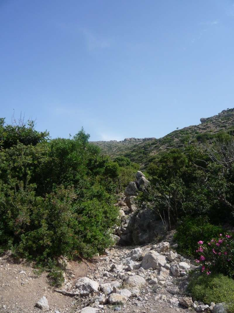 Greece, Island of Crete, Paleochora, Walk to Anidri 20810
