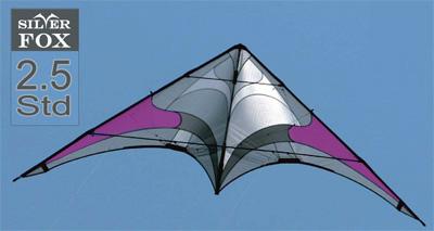 flying wings intermediaire 2_510