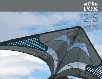 flying wings intermediaire 2_5v10