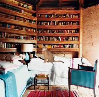 Mr. Fares's Zimmer Librar10