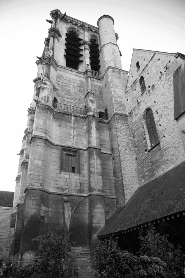 Compte rendu de la sortie sur Troyes et les Côtes de Bar du 8 au 10 octobre 2010 - Page 6 Sans_t11