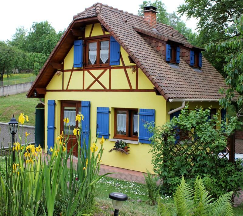 """Les iris du """"Gîte en Alsace"""" Ensemb10"""