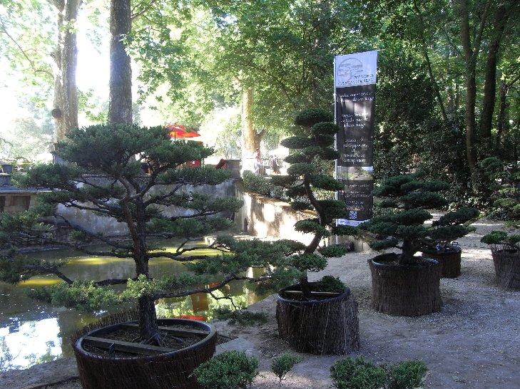 Journées des plantes d'Albertas Copie_34