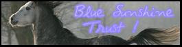 #6: Blue Sunshine Trust 28ur5u10