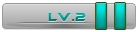 Level 2 User