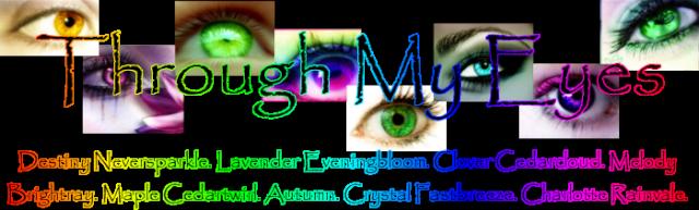 Through My Eyes Thank_10