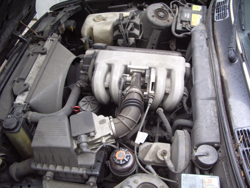 BMW 318 is E30 : the black track machine ... Imgp4612