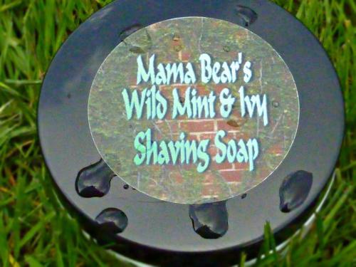 Mama bear's - Page 4 Mama_b10