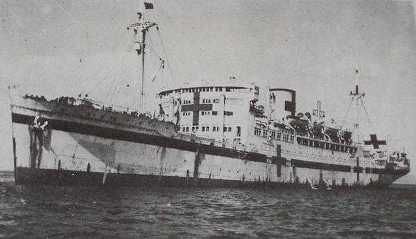 Projet de navire-hôpital Hikawa10