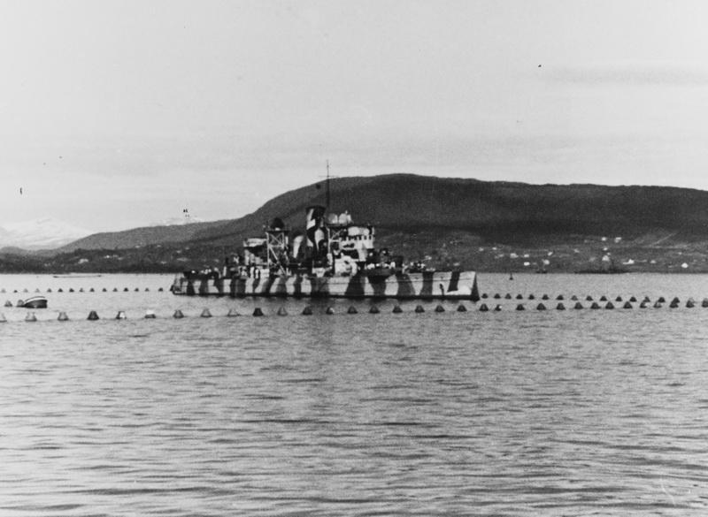 Marine norvégienne  Nymphe10
