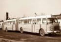 Skoda/Jelcz-Busse vom Fleischerbus Jelcz_11