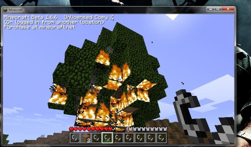 Minecraft - Page 4 Burn_b10