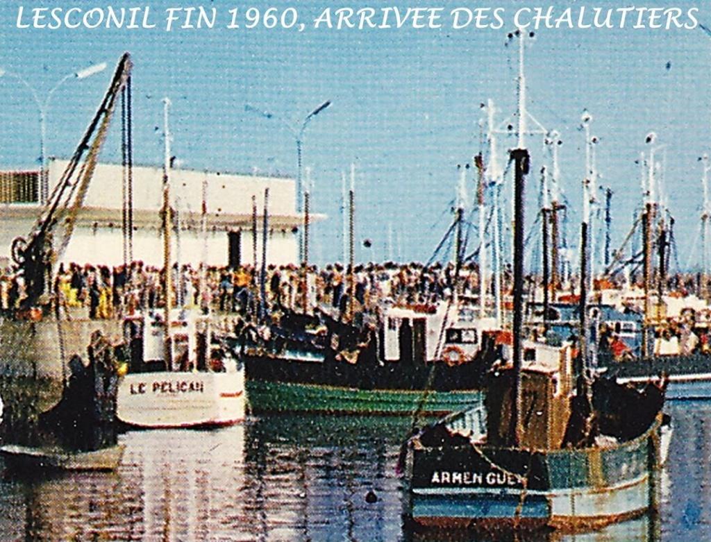 [Activité des ports] Le Guilvinec - Page 12 Arrive10