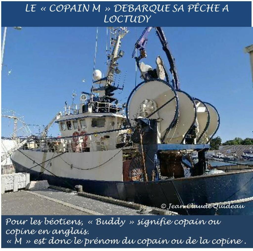 [Activité des ports] Le Guilvinec - Page 12 Buddy_11