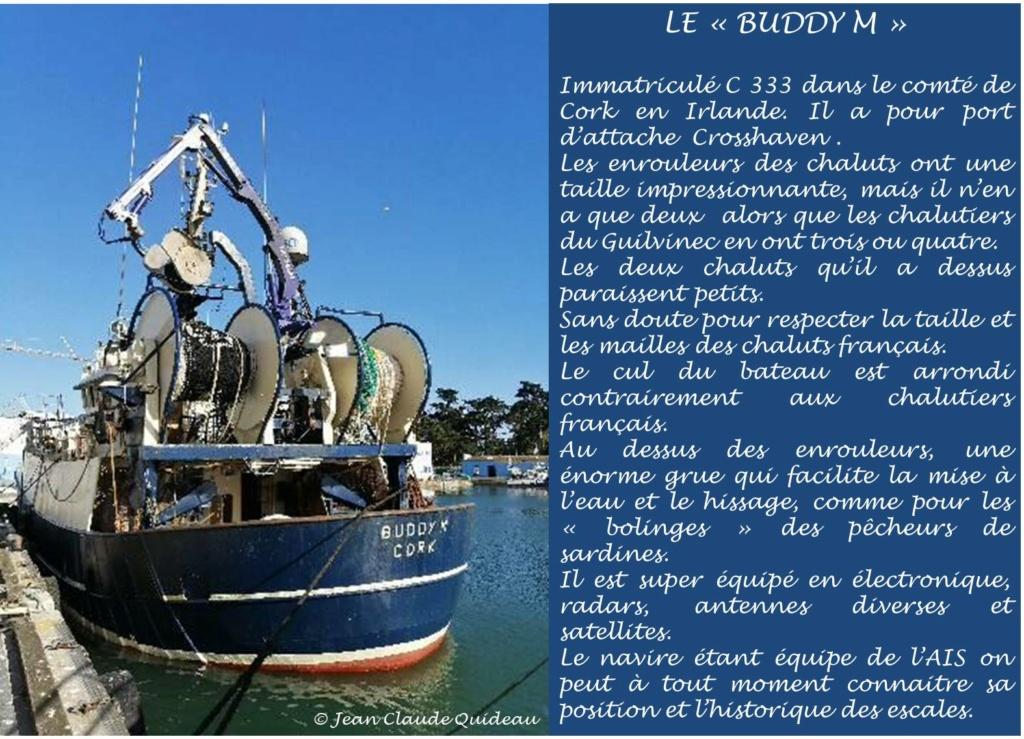 [Activité des ports] Le Guilvinec - Page 12 Buddy_14