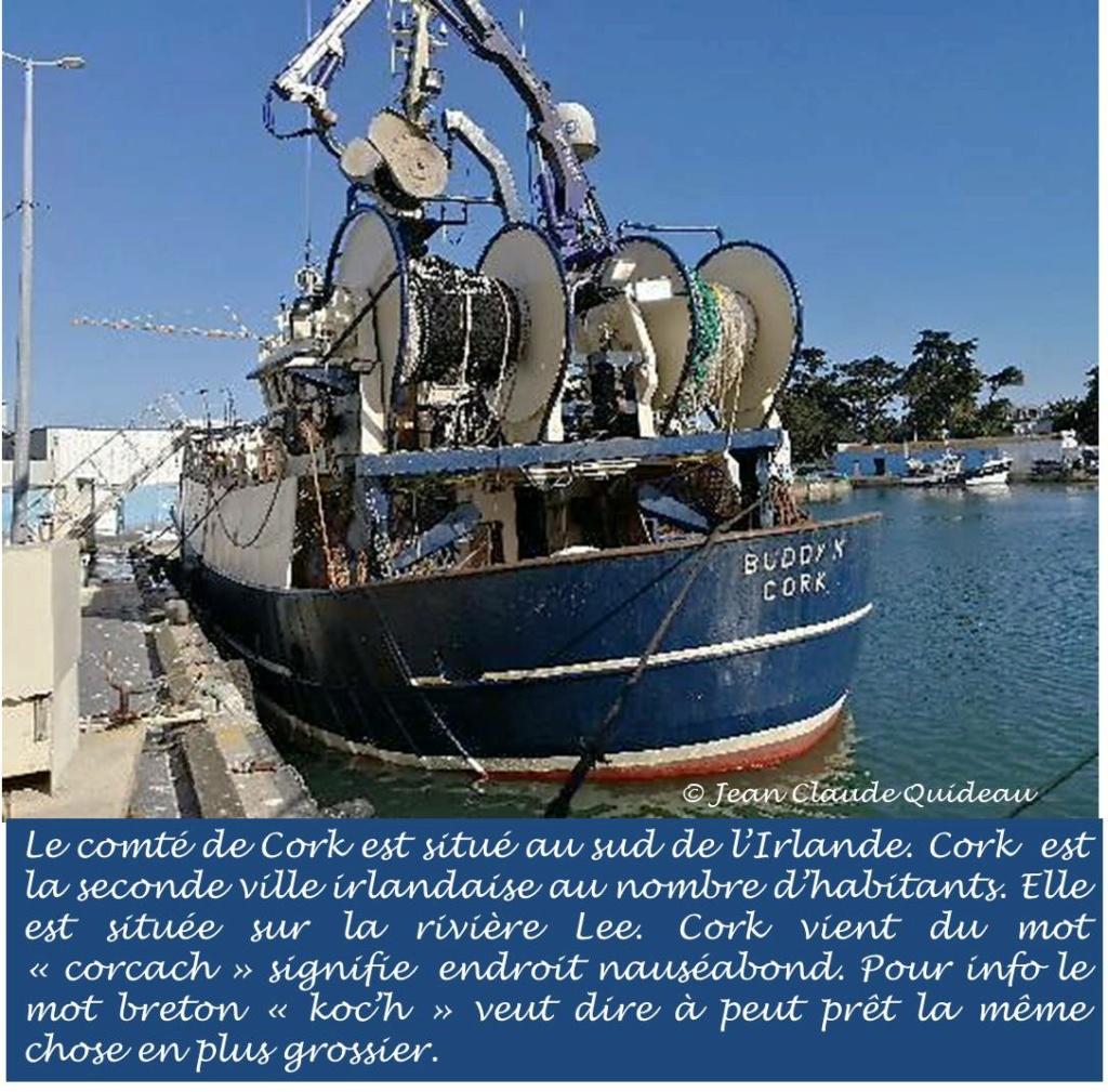 [Activité des ports] Le Guilvinec - Page 12 Buddy_15