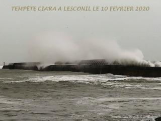 [Activité des ports] Le Guilvinec - Page 11 Ciara_10