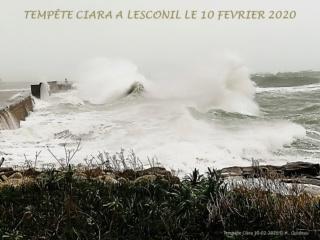 [Activité des ports] Le Guilvinec - Page 11 Ciara_12
