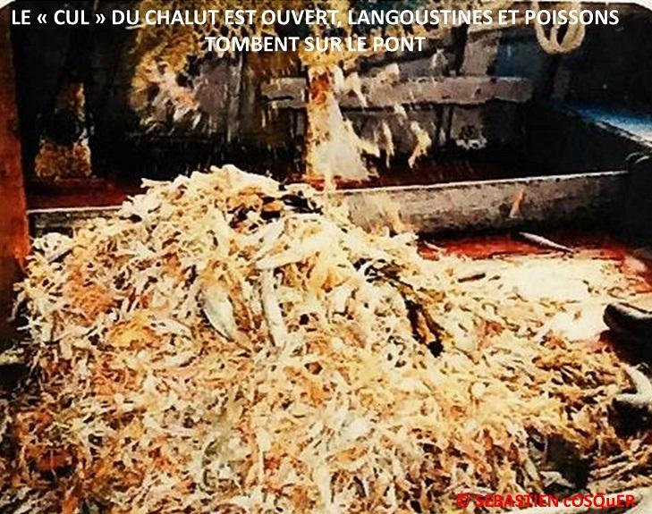 [Activité des ports] Le Guilvinec - Page 12 Palanq10