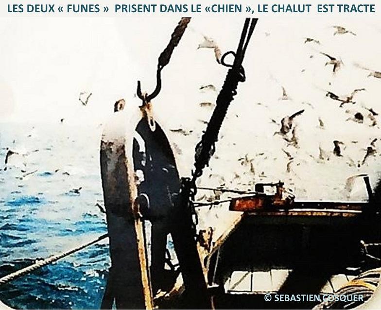 [Activité des ports] Le Guilvinec - Page 12 Remorq10