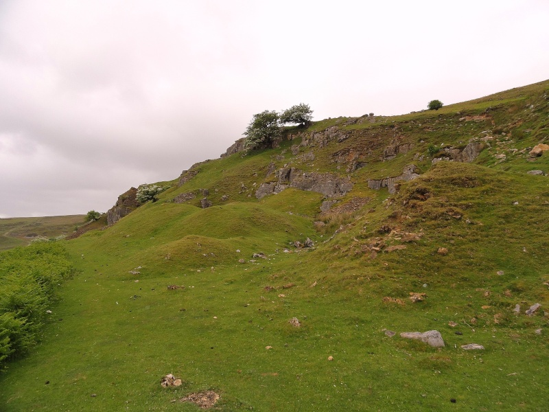 llangattock escarpment to lonely sheppard,crickhowell area Dsc02823