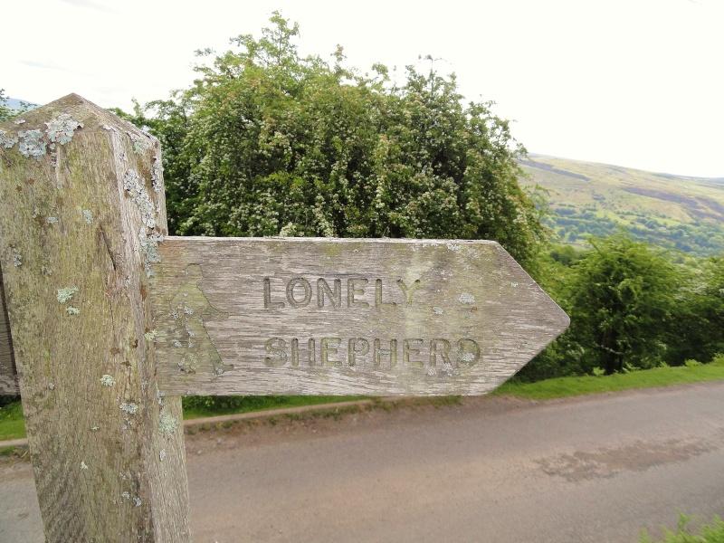 llangattock escarpment to lonely sheppard,crickhowell area - Page 2 Dsc02922