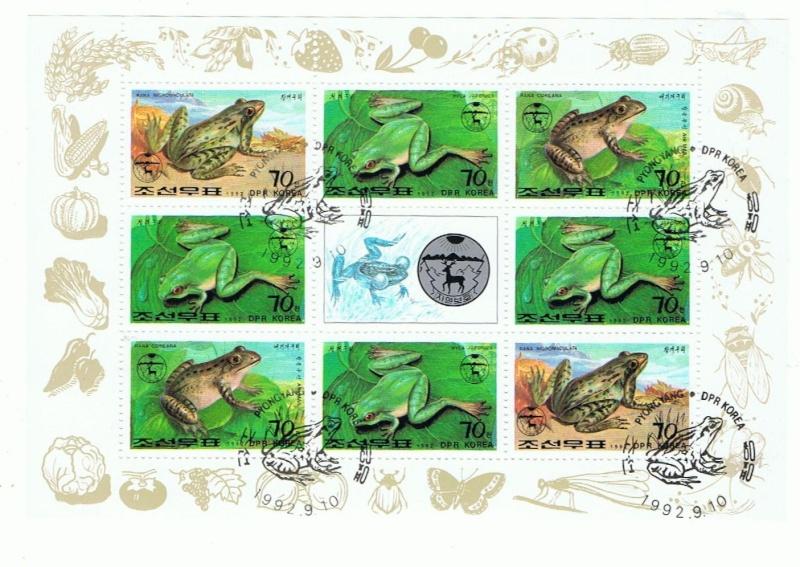 Frösche, Kröten und andere Lurche Klb_3310