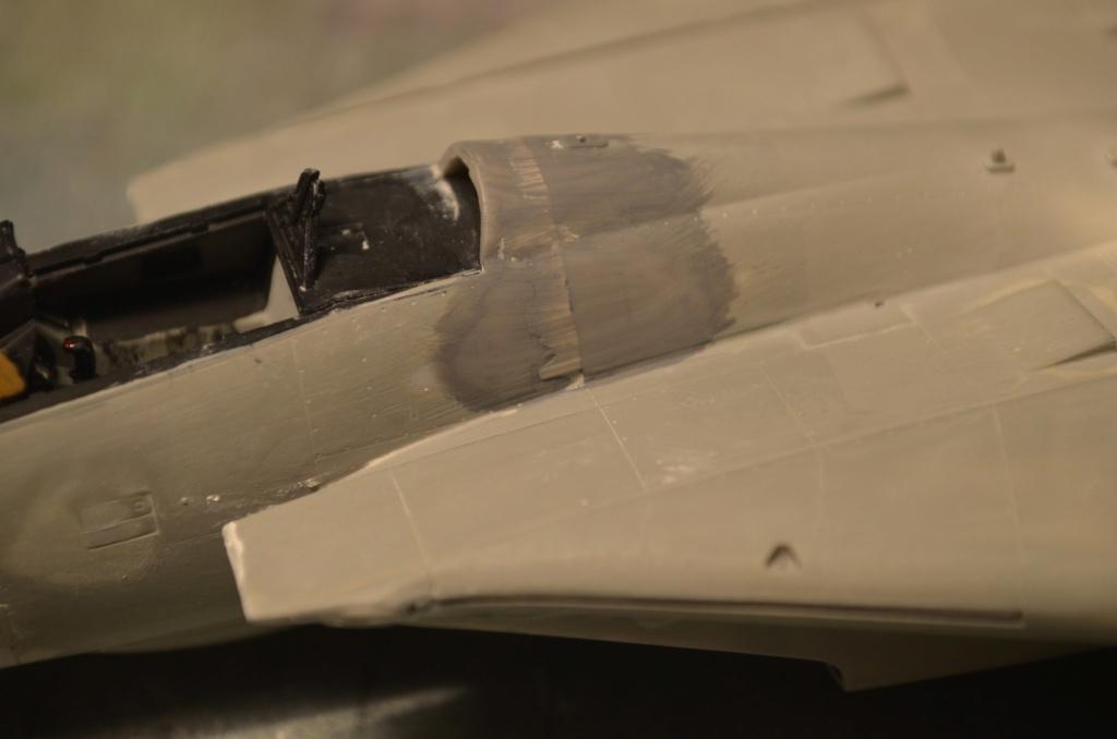[Hasegawa] F-14A+ Tomcat Haseg350