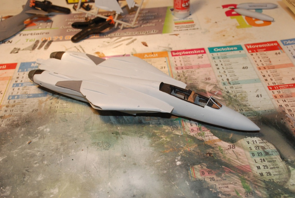[Hasegawa] F-14A+ Tomcat Haseg361