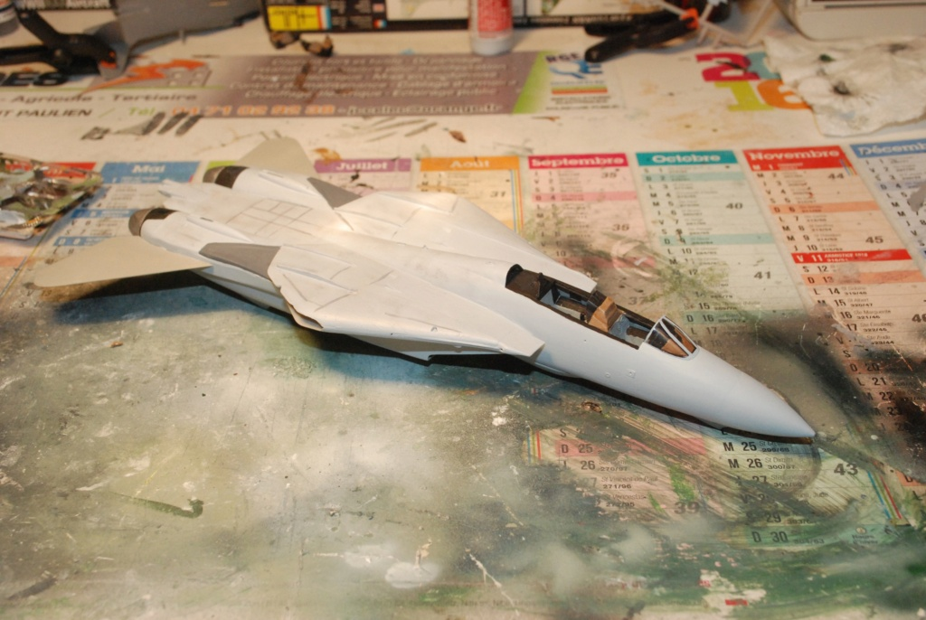 [Hasegawa] F-14A+ Tomcat Haseg363