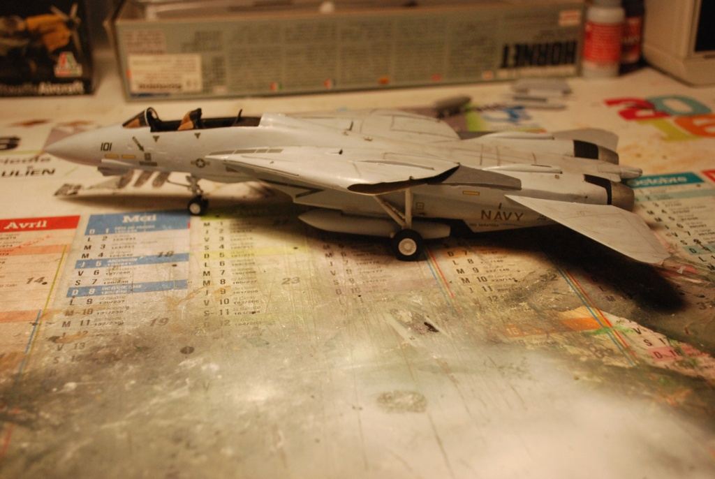 [Hasegawa] F-14A+ Tomcat Haseg388