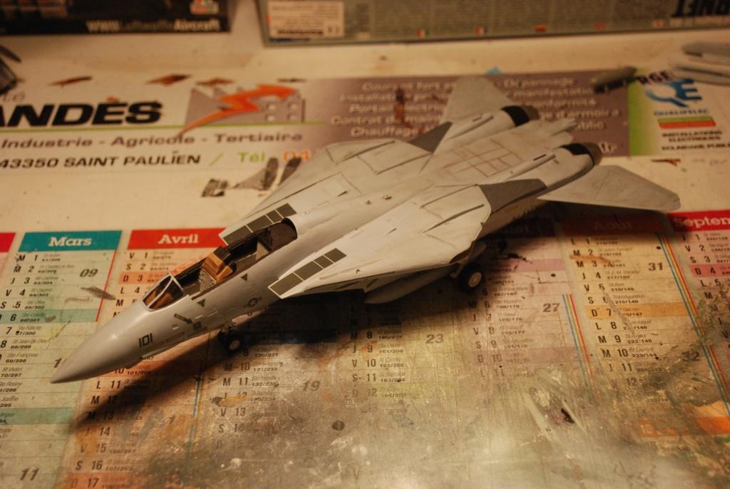 [Hasegawa] F-14A+ Tomcat Haseg389