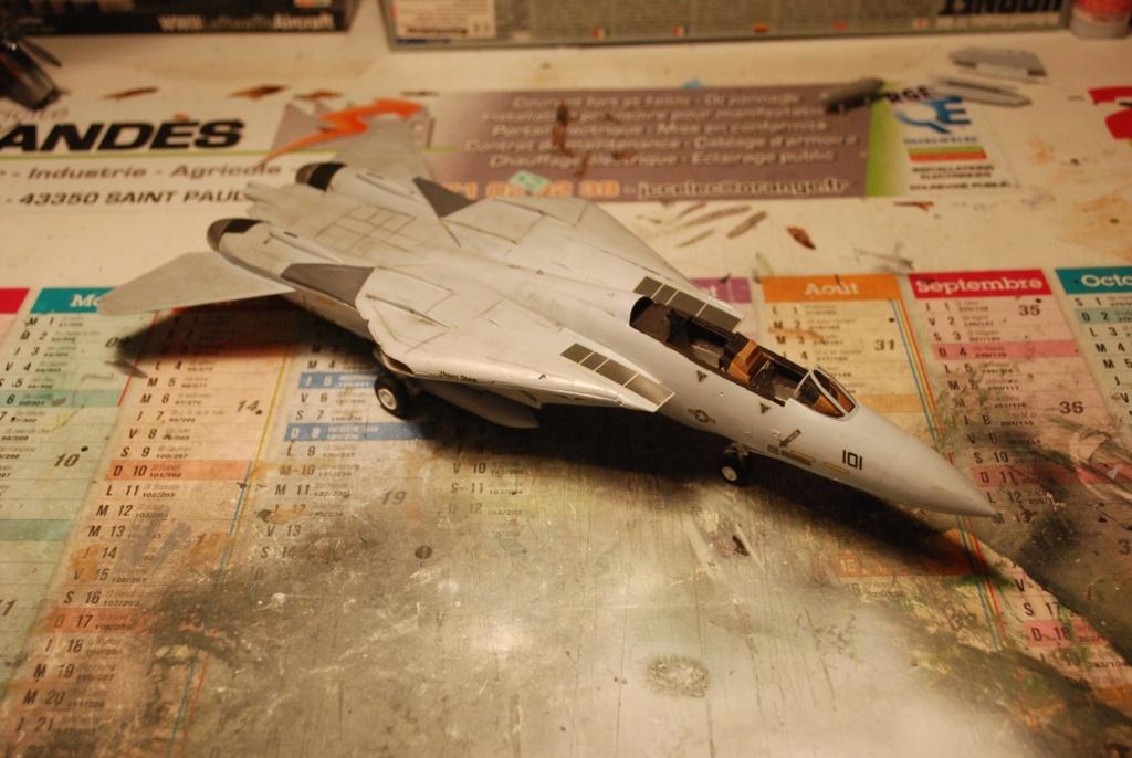 [Hasegawa] F-14A+ Tomcat Haseg391
