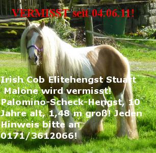 Irish Tinker Stuart Malone spurlos verschwunden!!!  Stuart12
