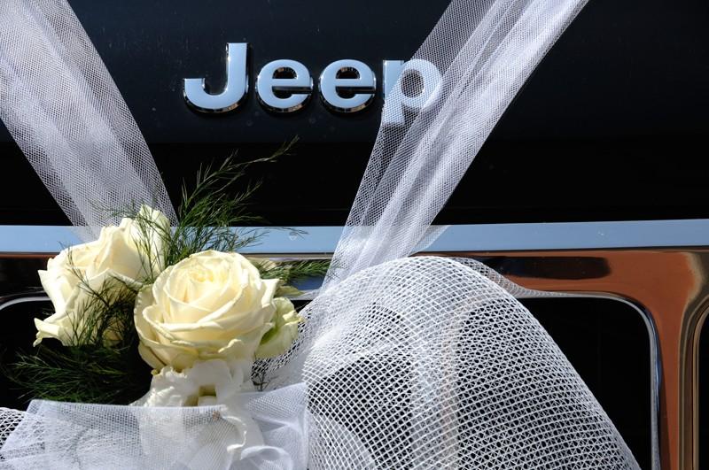 Jeep di Photofrancografia - Pagina 2 _dsc0011