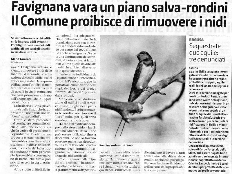 Rassegna Stampa Rondin10