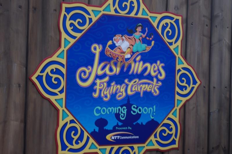 [Tokyo DisneySea] Jasmine's Flying Carpets (18 juillet 2011) - Page 2 Imgp5110