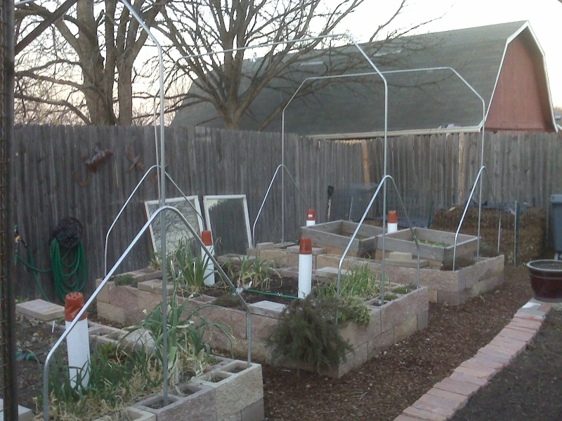 Hoop House Issue...How to Solve Please! - Page 2 Hoops11