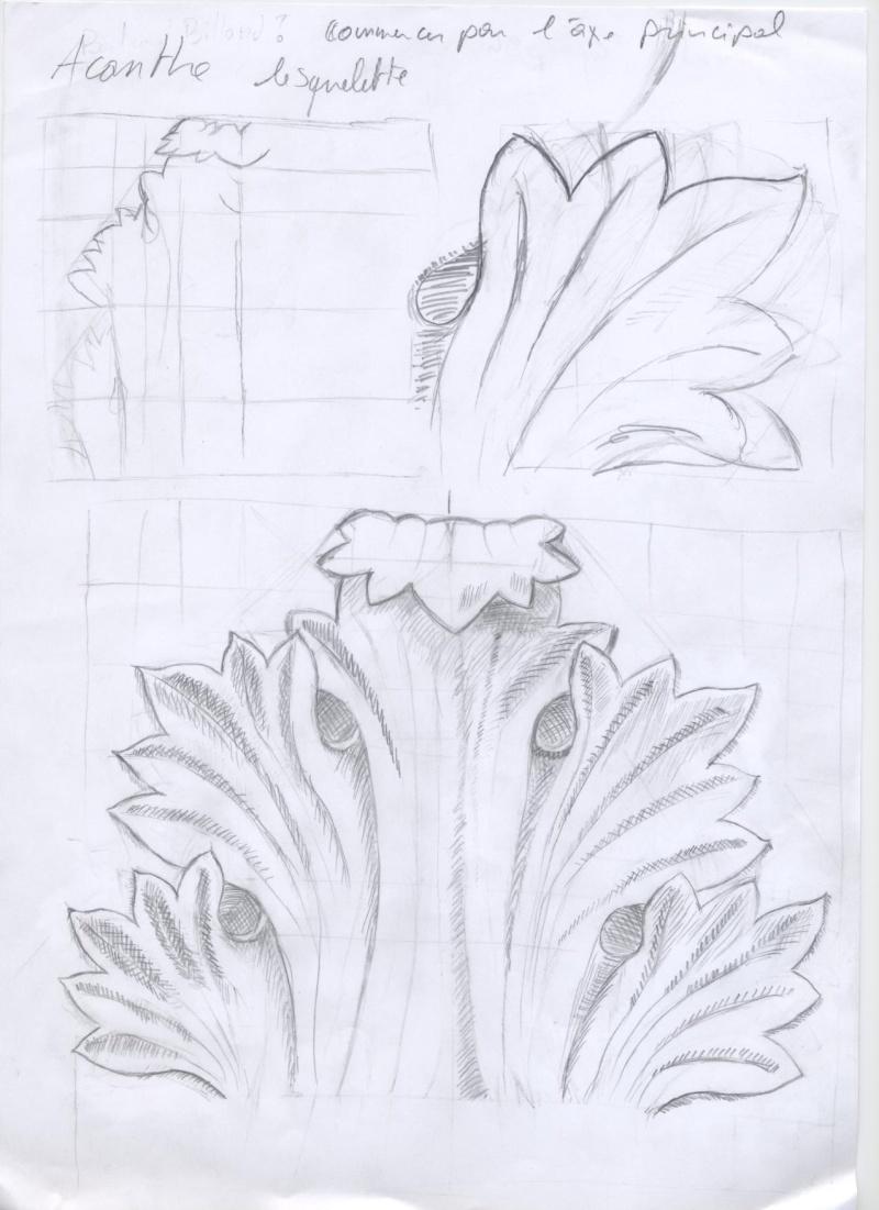 mon aprentissage commence ...par le dessin Acanth11