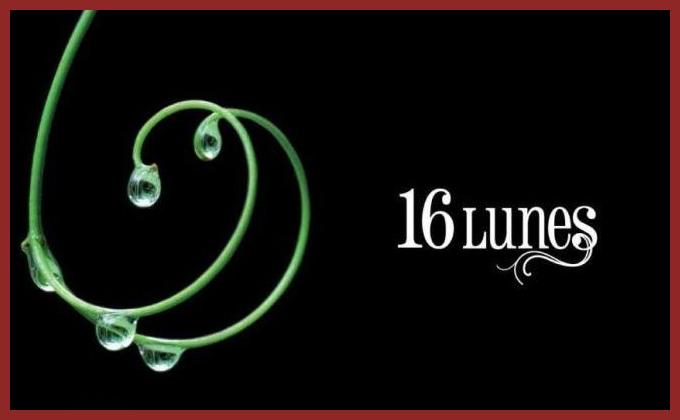 16 Lunes : Chapitre un