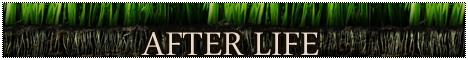 Nos Logos Gris10