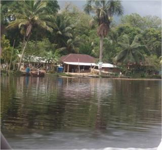 Donación de Plantas Eléctricas, a Nuestros Hermanos Indigenas de la Comunidad de Capure, Estado Delta Amacuro Imagen26